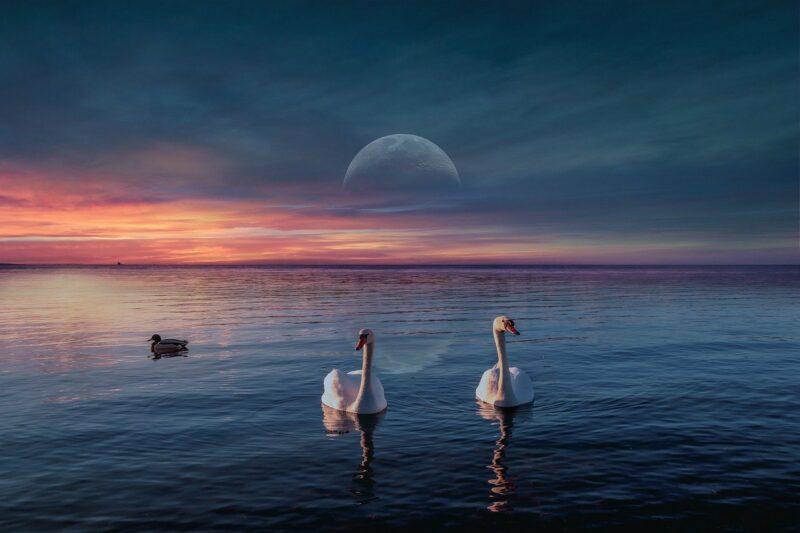 background, sunset, lake-6616007.jpg